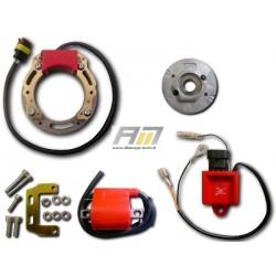 kit d'allumage 068K051 pour Routière Aprilia modèle Tuono 50