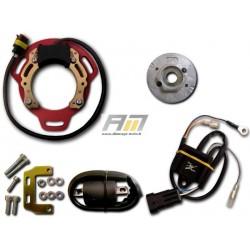 kit d'allumage 068K085 pour Routière BSA modèle B25/40/44/50, C15