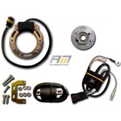 kit d'allumage 068K291 pour Cross Maico modèle MC 490/T Alpha