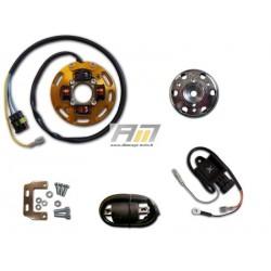 Kit d'allumage avec éclairage 210K051 pour Routière Aprilia modèle RS50 Tuono