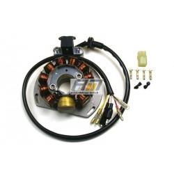Stator et alternateur G146 pour Enduro Gas Gas modèle EC 300